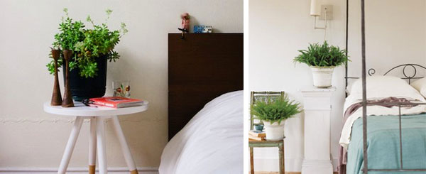 Растания для спальни