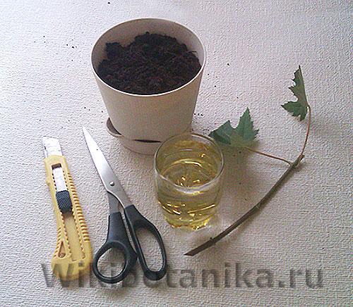 Инструменты для черенкования