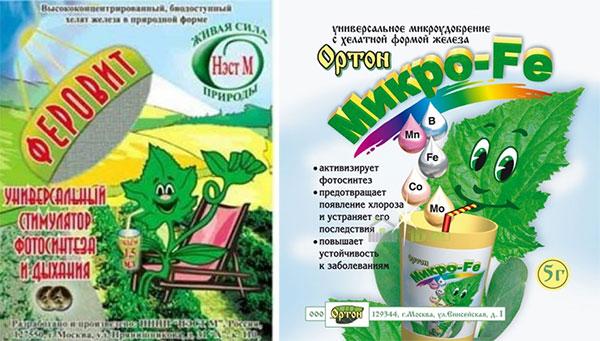 Препараты против хлороза