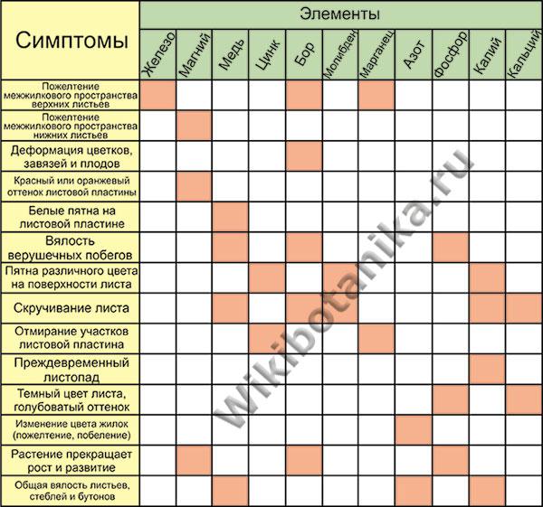Таблица дефицита микроэлементов у растений