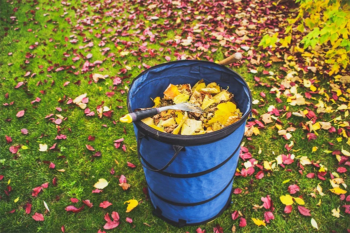 Сбор опавших листьев в саду