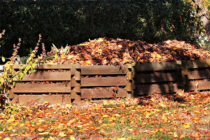 Использование компоста осенью