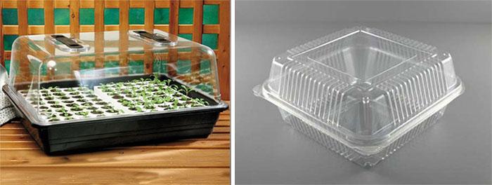 Контейнеры для выращивания семян дома