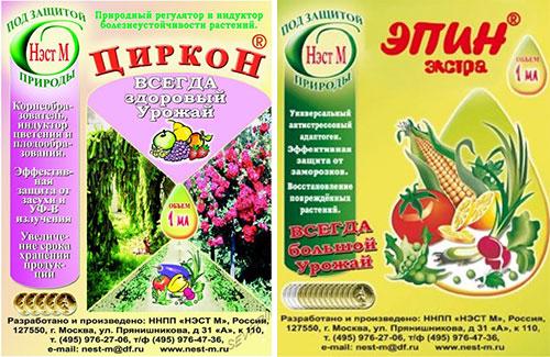 Замачивание семян в цирконе и эпине