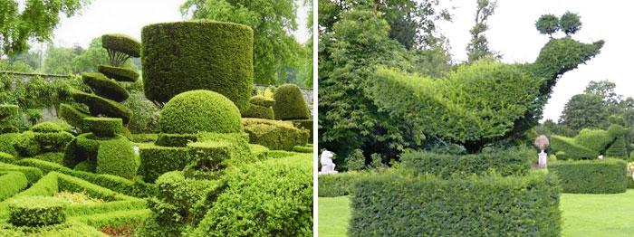 Растительная скульптура