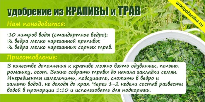 Подкормка из крапивы и трав