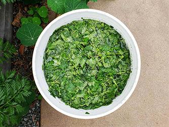 Удобрение из крапивы для подкормки растений