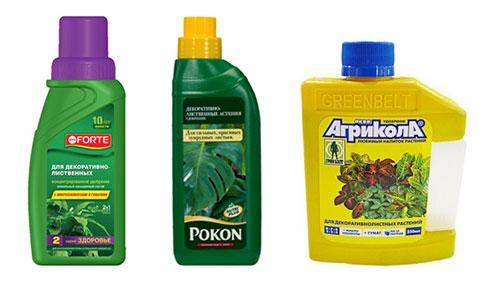 Самые популярные удобрения для декоративно-лиственных растений
