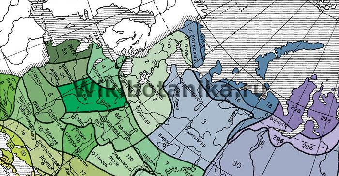 Зоны морозостойкости растений СССР, северо-запад